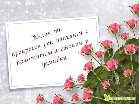 Желая ти прекрасен ден изпълнен с положителни емоции и усмивки!