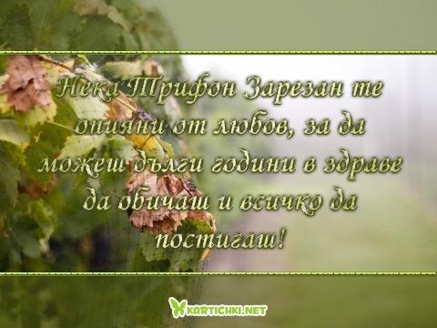 Нека Трифон Зарезан те опияни от любов, за да можеш дълги години в здраве да обичаш и всичко да постигаш!