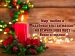 Мир, любов и разбирателство желая на всички хора през Новата година.