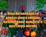 Нека Антоновден ти донесе много емоции, незабравими моменти и щастливи мигове