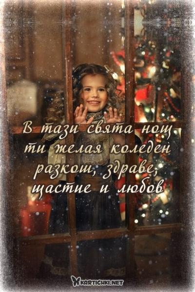 В тази свята нощ ти желая коледен разкош, здраве, щастие и любов