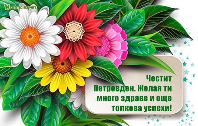 Честит Петровден. Желая ти много здраве и още толкова успехи!