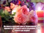 Пожелания за Цветница и Връбница