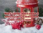 Много здраве, много любов и много късмет ти пожелавам през новата година