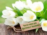 Честит имен ден Цветница и Връбница