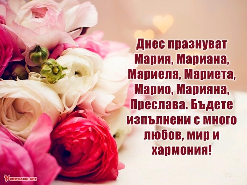 Днес празнуват Мария, Мариана, Мариела, Мариета, Марио, Марияна, Преслава